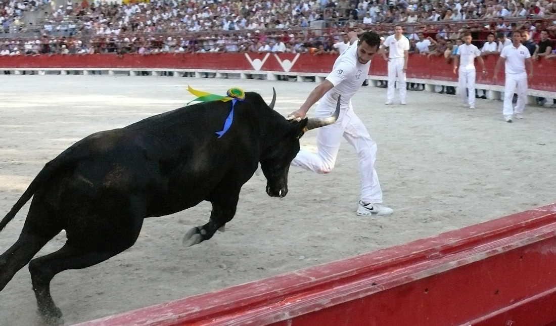 Lou Biòu - Feest van de fabelachtige stier